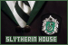 Harry Potter: Slytherin House: