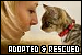 Cats: Adopted & Rescued: