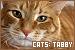 Cats: Tabby: